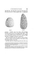 Էջ 123