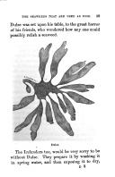 Էջ 29