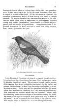 Էջ 21