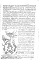 Էջ 91