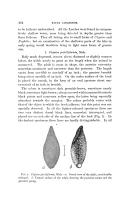Էջ 494