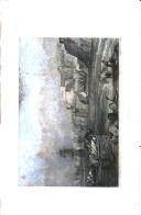 Стр. 558