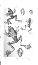 Էջ 277