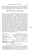 Էջ 103