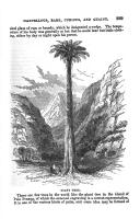 Էջ 229