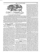 Էջ 167