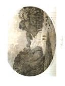 Стр. 224