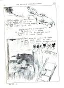Էջ 305