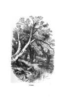 Էջ 31